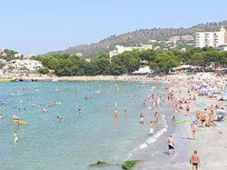 Mallorca Karte Paguera.Mallorca Homepage De Urlaubsorte Paguera Peguera